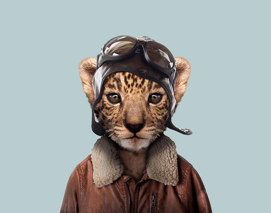 Leopard (Cub)