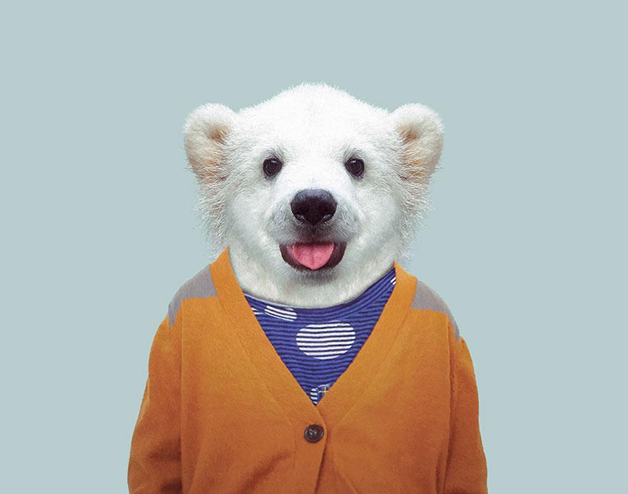 Polar Bear (Cub)