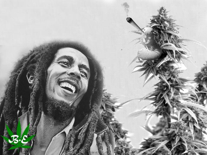 420! Bob With Caterpiller