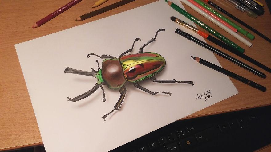 3d Rainbow Stag Beetle