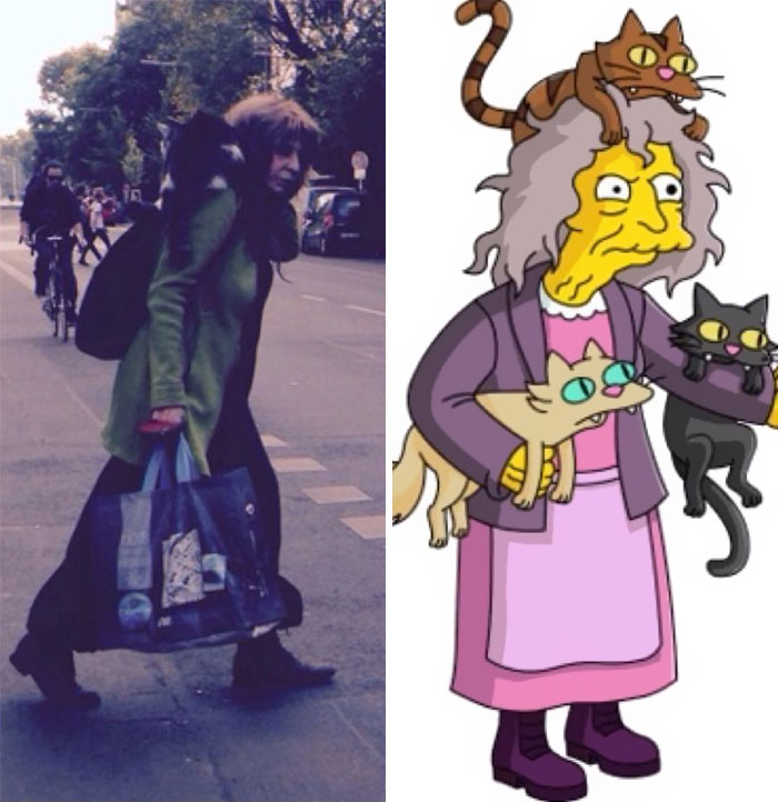 Cat Lady From The Simpsons