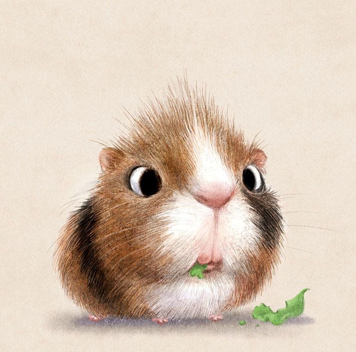 Cute Animal Illustration