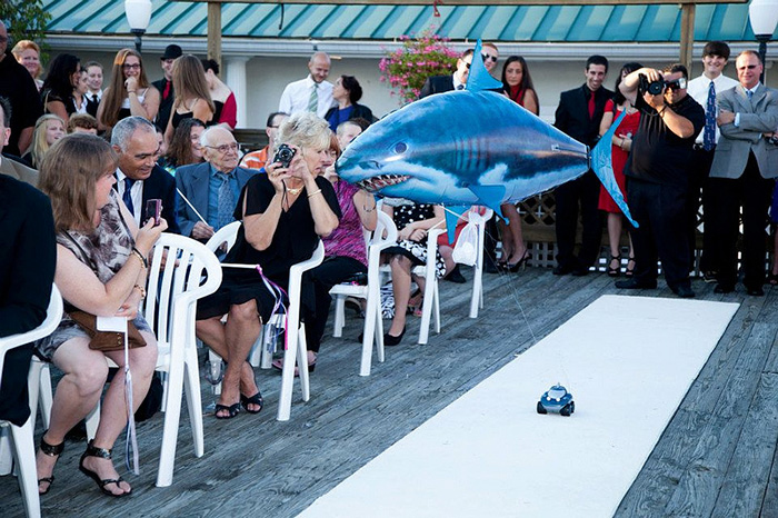 Ring Bearer For Jaws Themed Wedding