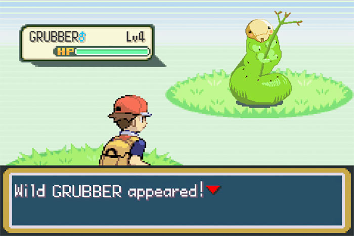 Wild Grubber Appeared!