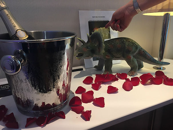 When I Booked My Hotel A Few Months Ago, I Put In A Few Special Requests As A Joke... Champagne, Roses And A Plastic Dinosaur