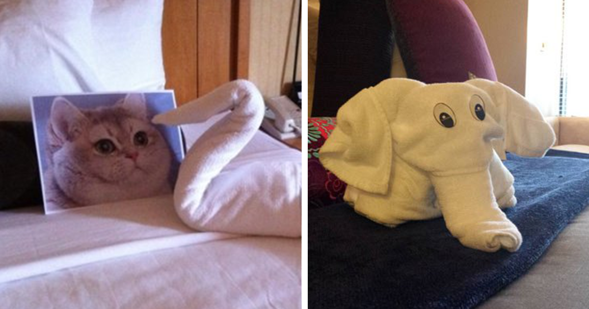 These Guys Trolled Hotel Staff With Ridiculous Room ... Funny Hotel Requests