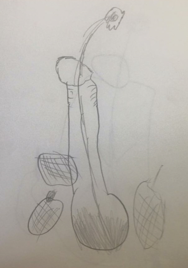 Drawing Vases With Flowers In Art Class