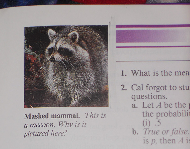 That's An Interesting Question, Math Textbook