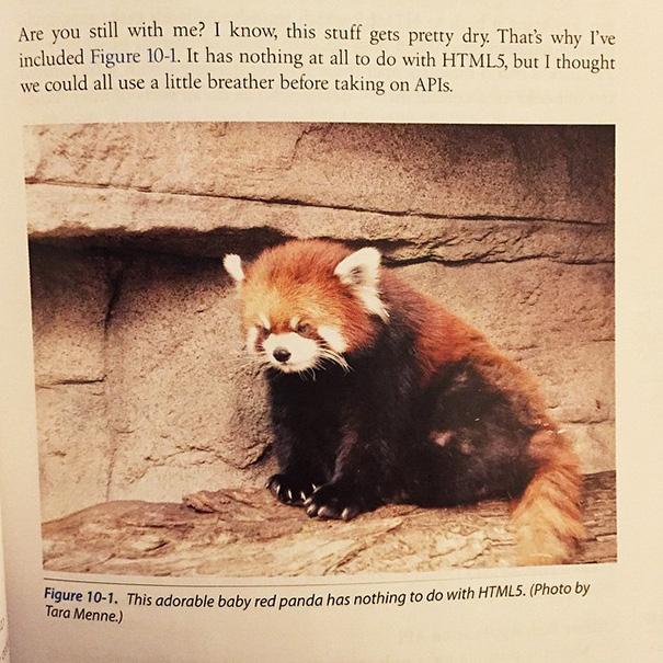 Found In My Web Design Textbook