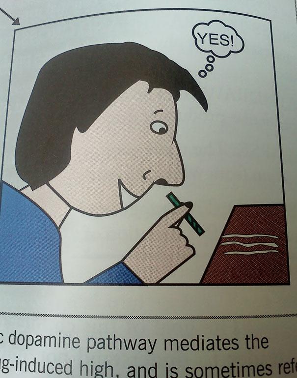 My Textbook Is Fun