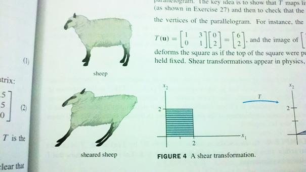 Well Played, Math Textbook
