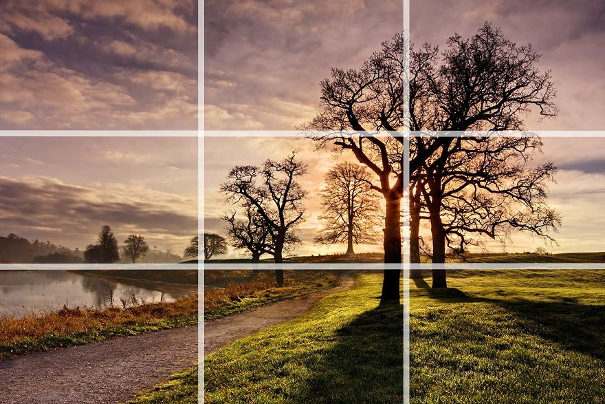 20 Composition Techniques That Will Make Your Photos Look Better