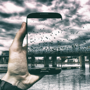 Through The Phone: I Incorporate My Phone Into Our Everyday Surroundings