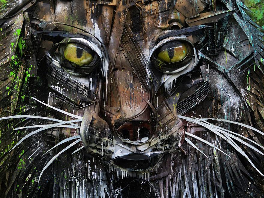 Lynx Face Detail