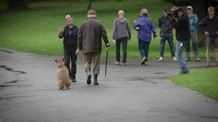 worlds-loneliest-dog-movie-star-2