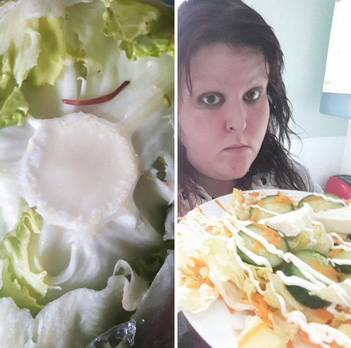 worm-lettuce-complaint-leila-jayne-daly-4