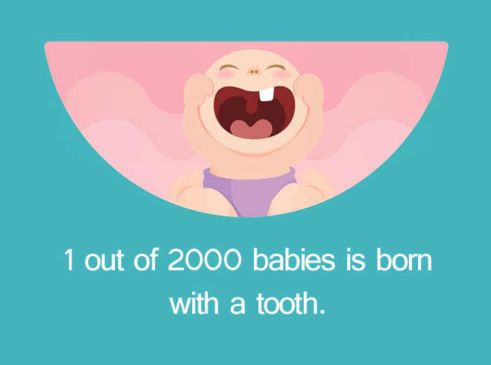 12 Weird Pregnancy Facts That You Probably Didn't Know