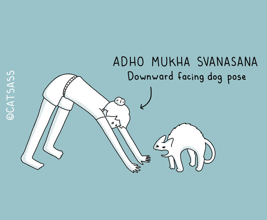 These Comics Show How You Can Do Yoga With Your Cat
