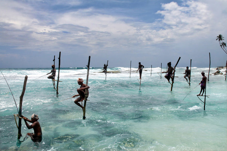 Stilt Fishing Is Practised By Several Fishermen Families In Sri Lanka (Here In Ahangama)