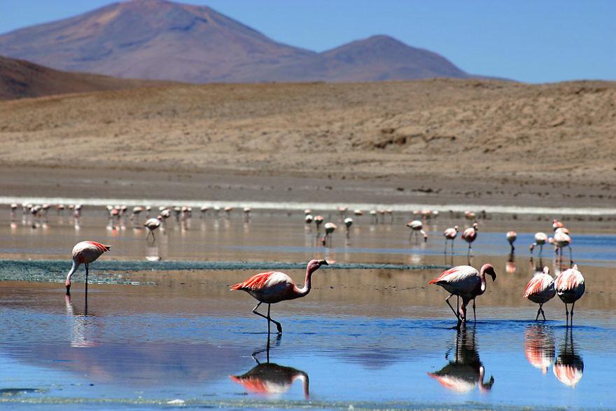 South Lipez, Bolivia