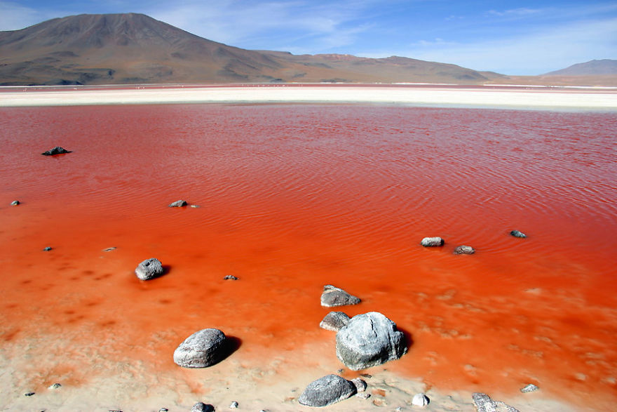 Laguna Colorada, South Lipez