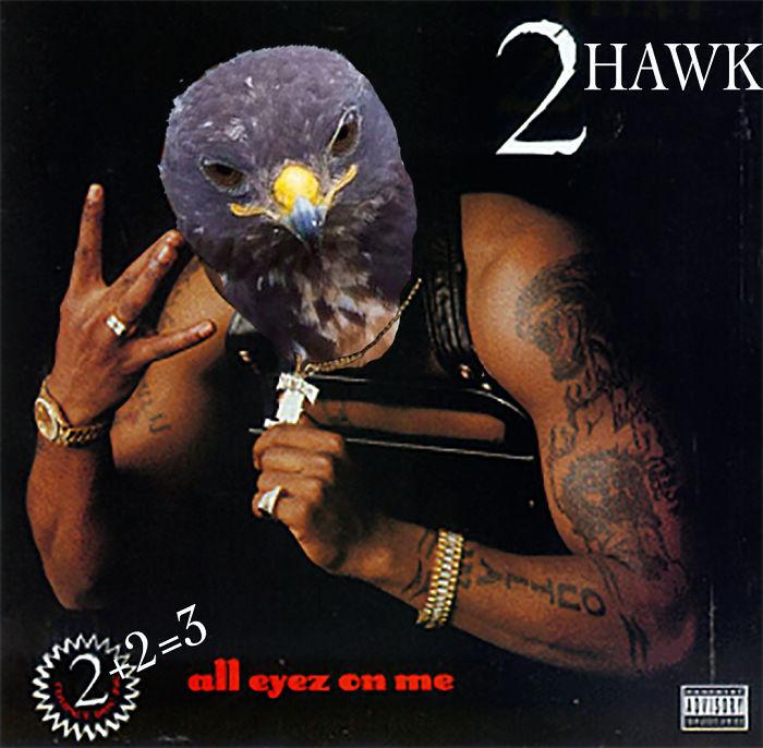 2hawk Shakeagle