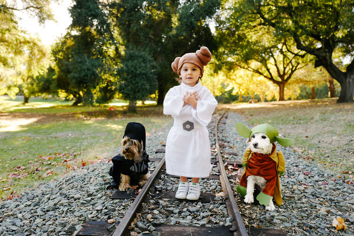 How A Photoshoot With A Toddler And Two Dogs Looks Like…