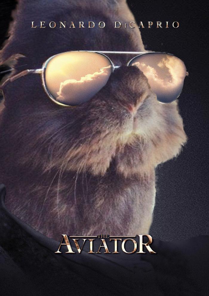 Th Aviator Bunny