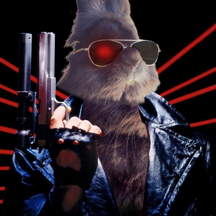 Bunnynator