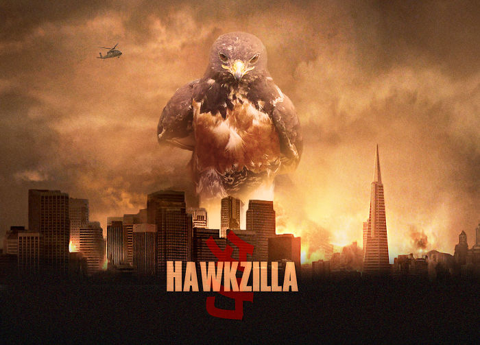 Hawkzilla!