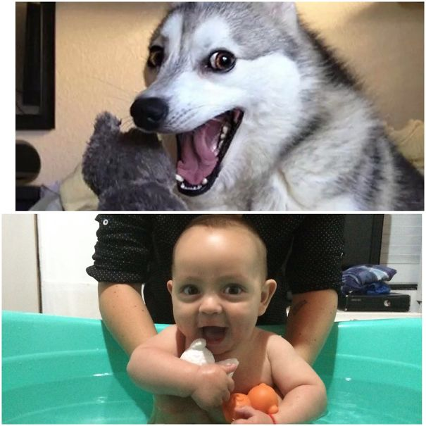 Find The Differences