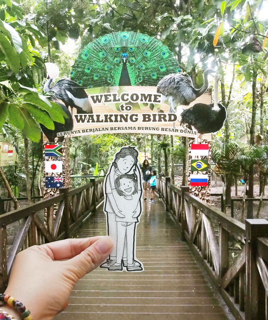Observación de aves en el parque