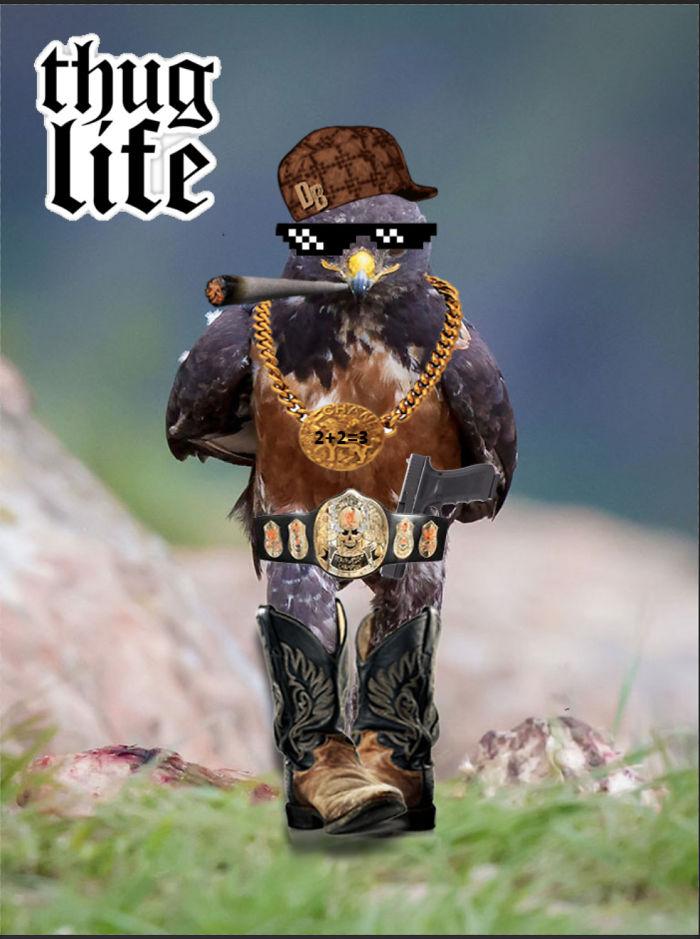 Thug Life Hawk