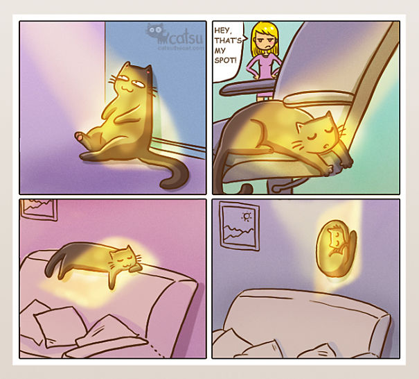 Funny-cat-comics-catsu