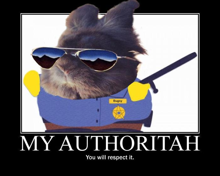 Respect My Authoritah!