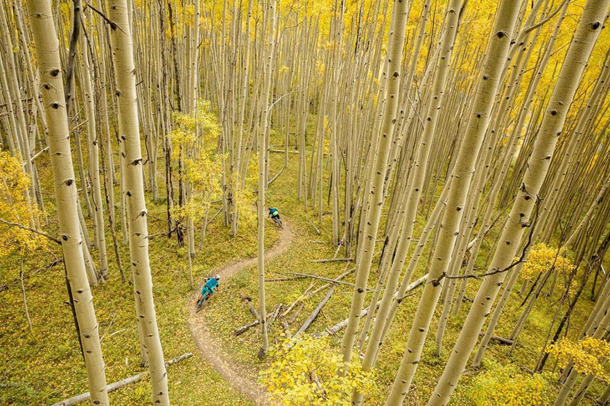 Masterpiece Category Finalist, Crested Butte, CO, United States