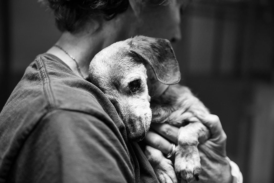 blind-shelter-dog-muneca-clings-2