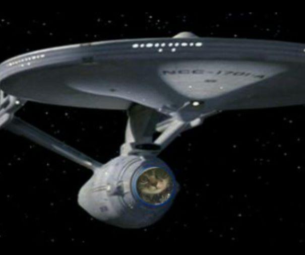 Cat + Uss Enterprise.