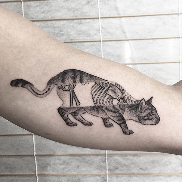 Cat Tattoo