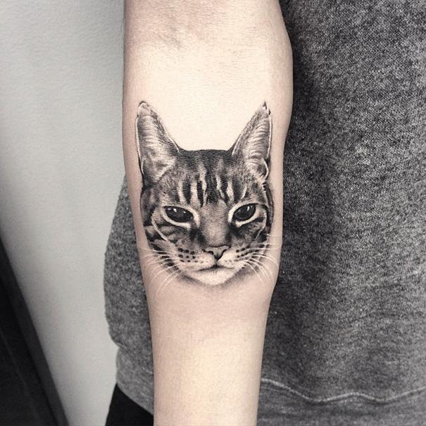 Tattoo Ideas Cats: 15+ Of The Best Cat Tattoo Ideas Ever