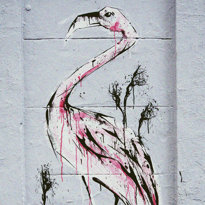 I Spent 5 Days Painting Flamingos On Buildings