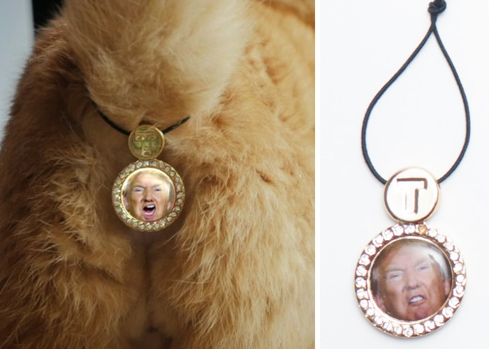 CatAssThrophy: Cat Jewelry To Cover Their Bums