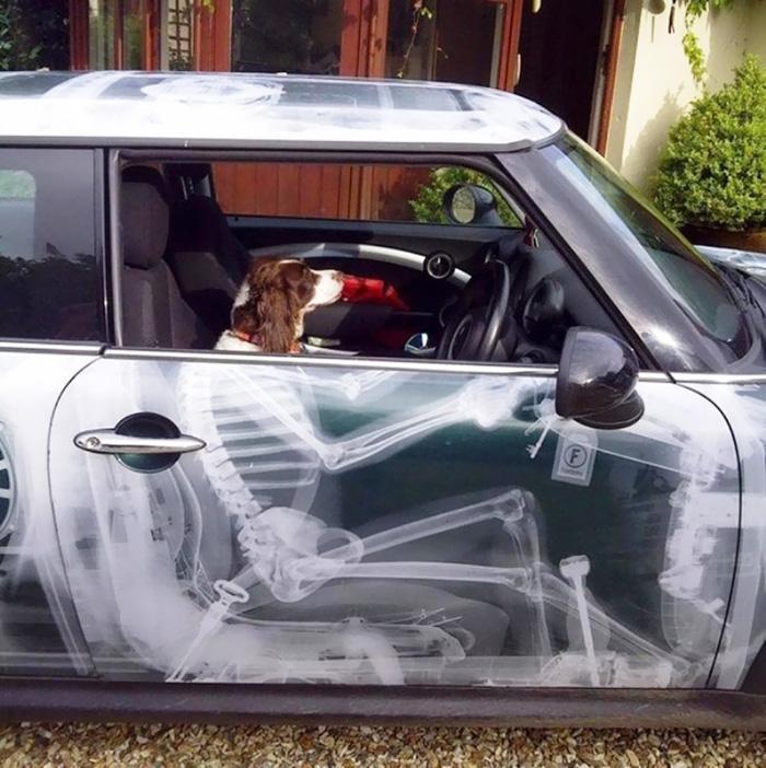 Car Skeleton