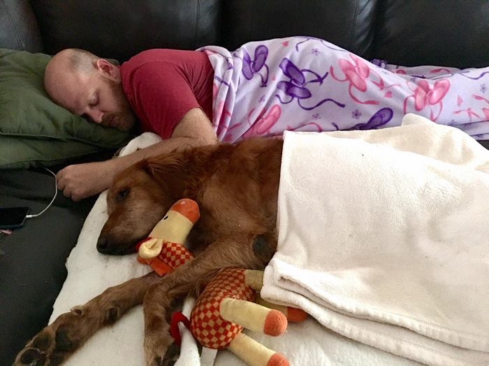 crippled-dog-rides-wagon-lymphoma-maverick-8