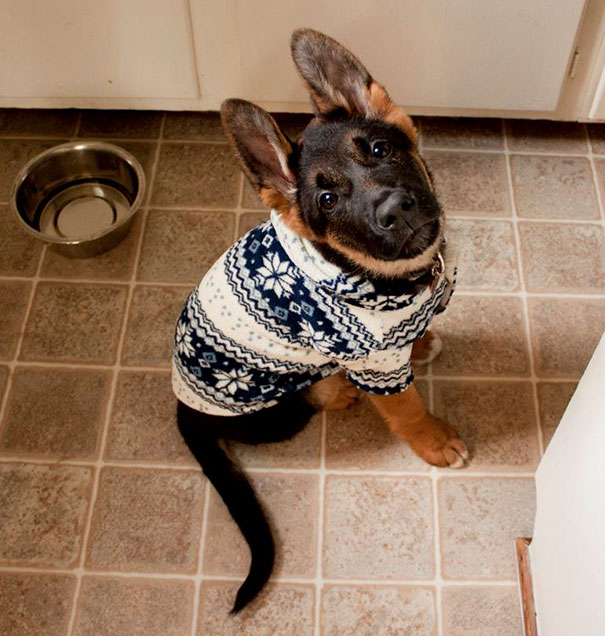 My Boyfriend Let Me Buy Him One Sweater Before We Went To The Mountains