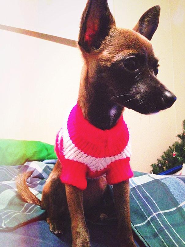 Tila In Her Christmas Sweater