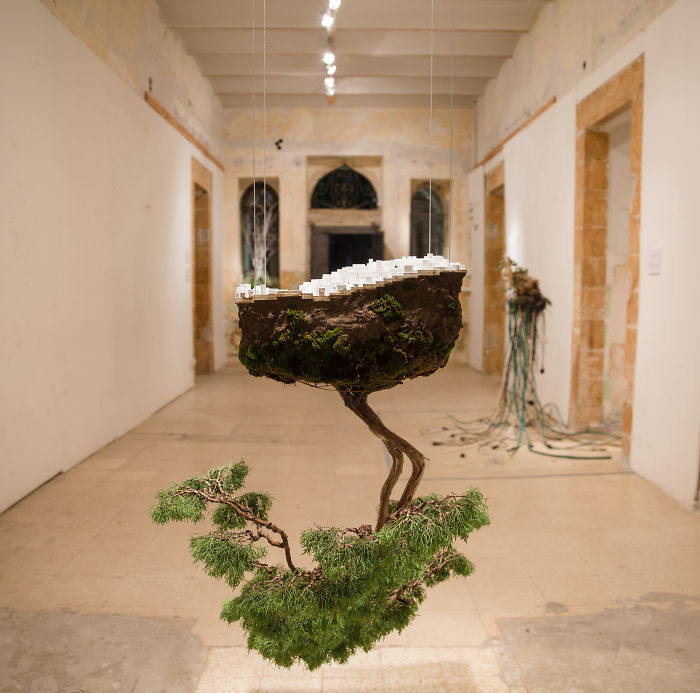Young Designers Combine Conceptual Art With Bonsai Trees