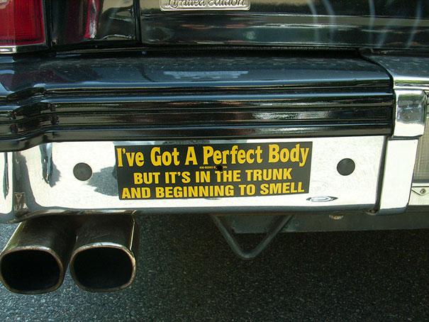 I've Got A Perfect Body