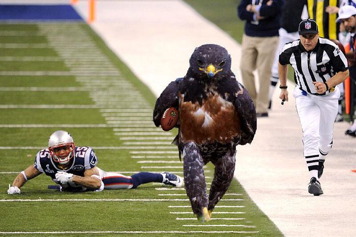 Running For Touchdown