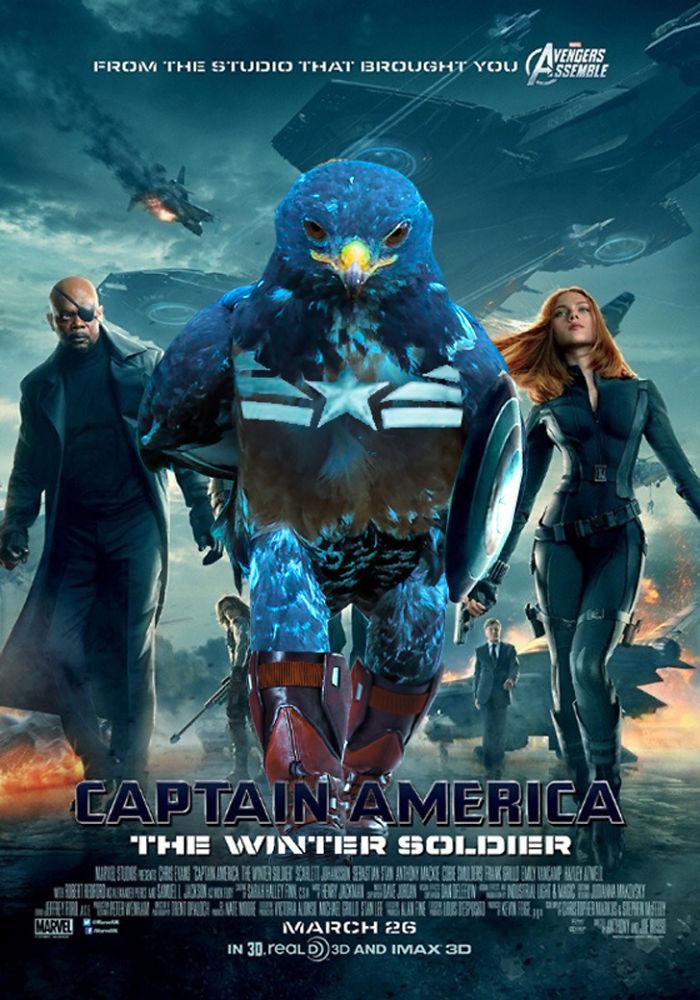 Hawk America - Winter Soldier